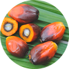 palm oil for sale