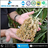 Best Quality & very Nutritious Sorghum at Cheap Price