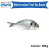 High Quality and fresh Sea Bream 10 kg