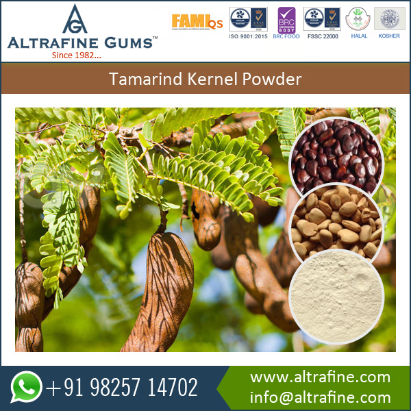 Fresh/ Natural/ Sortex Cold Water Soluble Tamarind Gum Powder for Sale