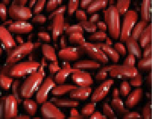 Small Red Kidney Bean