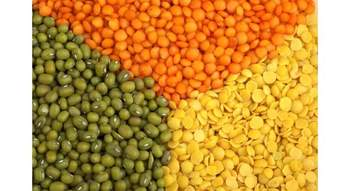 Red and Green Lentils for Sale / Football Red Lentils/ Green Lentils/Organic Lentils/////////