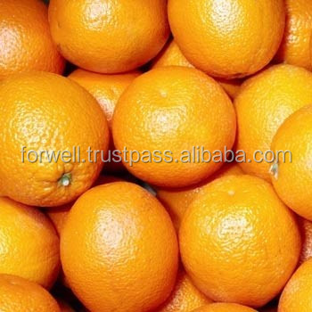 40 ft Reefer HC takes 24 MT citrus fresh fruit container : Orange & lemon