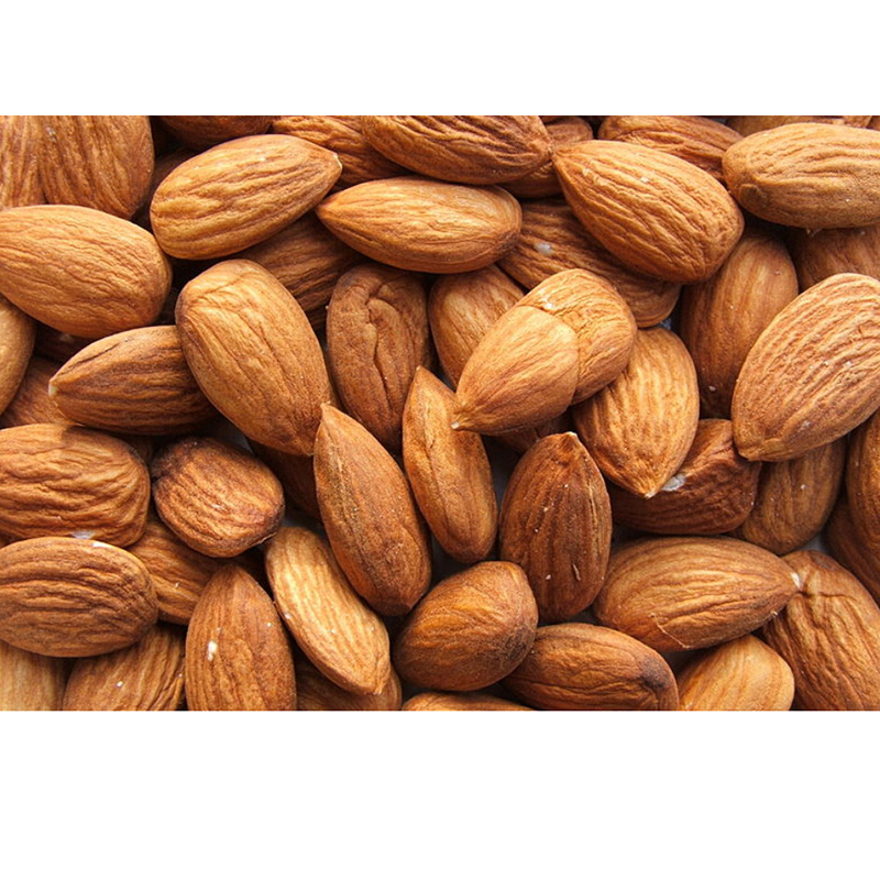 Best quality California raw natural almond nuts for sale