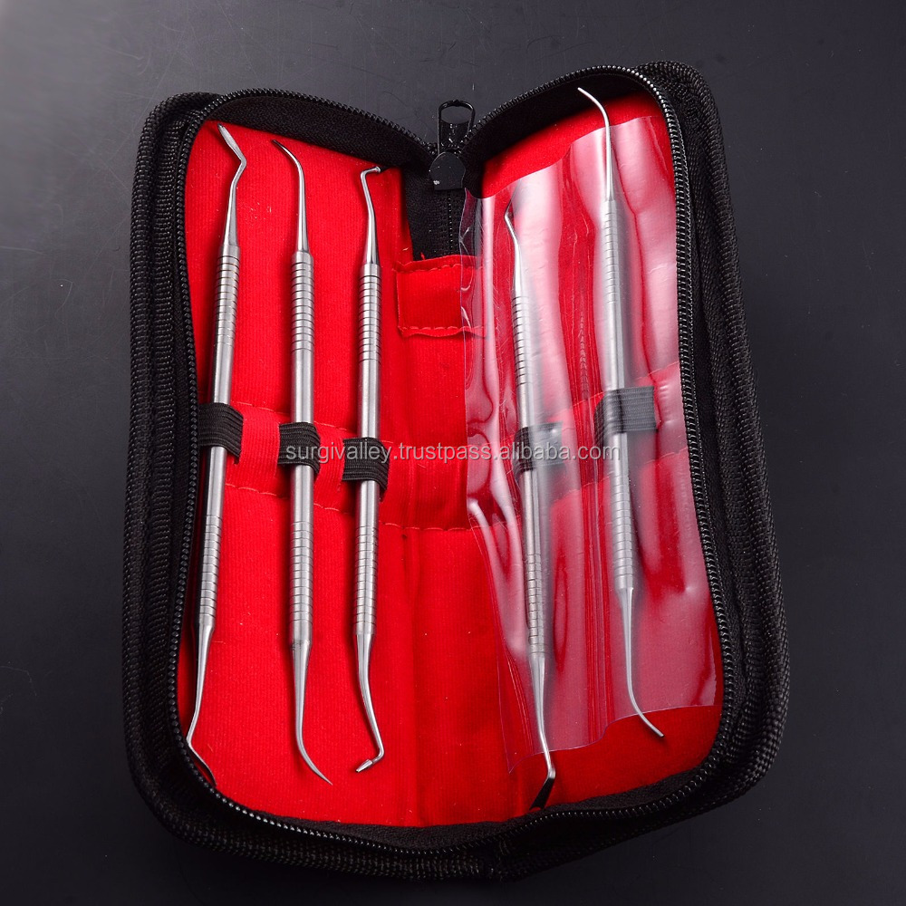 German Quality Dental Tooth Pick Probe Set Kit Hygiene Tools Stainless Steel