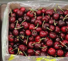 FRESH SWEET CHERRY