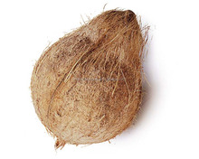 fresh young coconuts from thailand