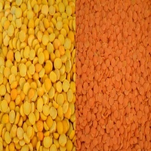 Football Red Type Lentils / Split Red Lentils and Whole red Lentil