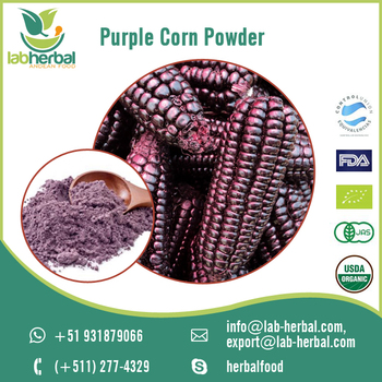 Top Quality Purple Extract Powder Rich in Nutrients at Attractive Price