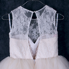 Lace Net Overlay Bodice Baby Girl Tutu Dress For Weddings/ Illusion Neckline Flower Girl Dress in Various Colors