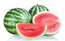 water melon wholesale best price