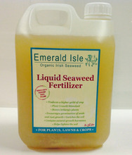 Seaweed based Fertilizers for sale
