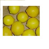 Lemon Fruits Best Quality Price