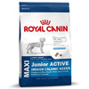 Royal Canin Maxi Junior Active Dry Dog Food From France