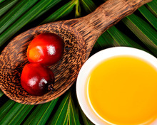 RBD CP8 and CP10 Palm oil Malaysia/Indonesia Origin