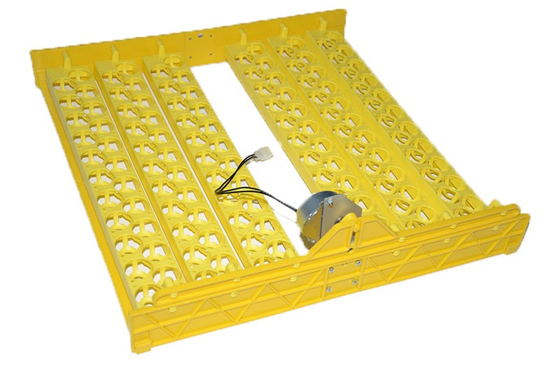 132 quail eggs tray with high quality