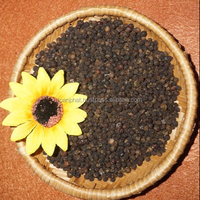 black pepper vietnam good price with high quality