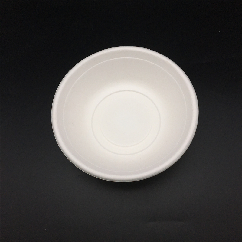biodegradable tableware..JPG