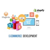 Web Design & Development, Ecommerce Web Designing along with SEO Services at Best Selling Price
