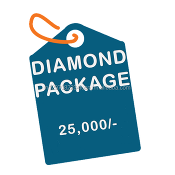 Diamond Package :- Business Website Design with free domain & hosting