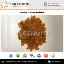 Indian Dried Golden Raisins at Factory Prices