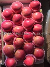 High Quality Sweet Organic Kashmir Apple