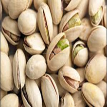 Bulk Organic Raw Pistachio Nuts for Buyers