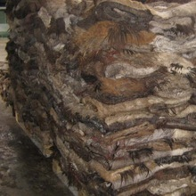 Donkey Skin And Animal Hides And Cattle Hides