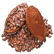 Certified Organic Cocoa Beans and Cocoa Nibs