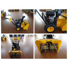 quality control services/3rd Party Inspection Service/Product quality inspection in Petrol snow blower