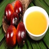 /product-detail/cheap-price-indonesia-malaysia-crude-palm-oil-for-sale-50039051388.html