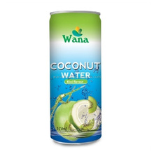 Vietnam Coconut Water Export With Kiwi Flavor in 320ml Can