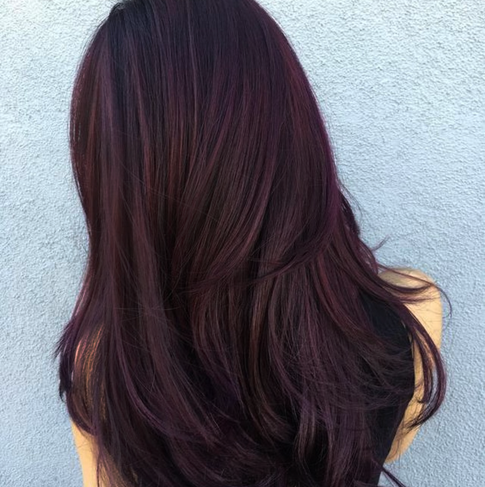 Burgundy Henna Hair Color.png
