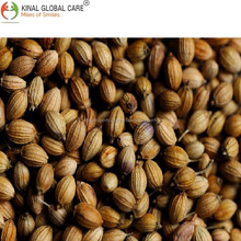 Indian Eagle Quality Coriander Seeds In Best Price