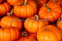 FRESH AND FROZEN PUMPKIN HIGH QUALITY - CHEAP PRICE