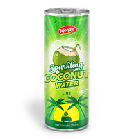 250ml Canned Sparkling Coconut Water Manufacturer