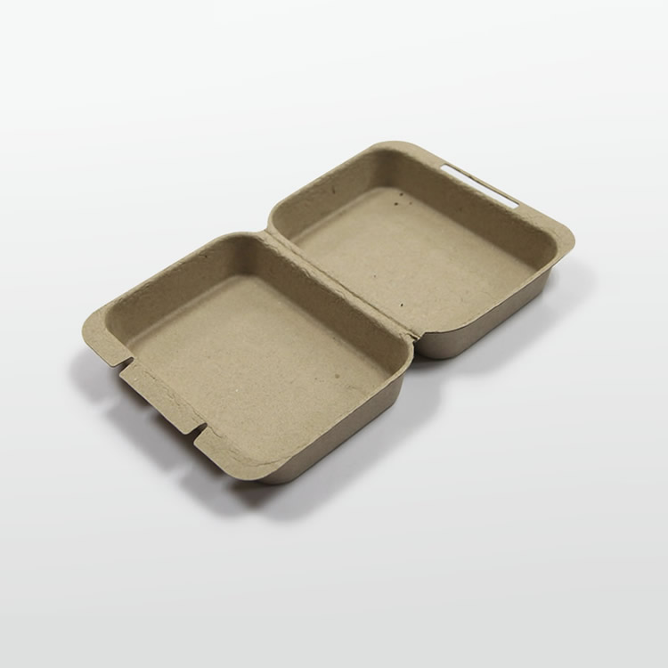 Disposable Biodegradable Molded Pulp Packaging Box