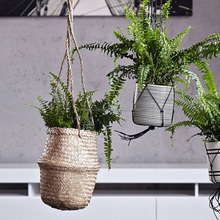 Seagrass hanging basket plant, natural and ecofriendly look