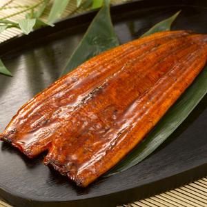 High Quality roasted fresh eel fish frozen