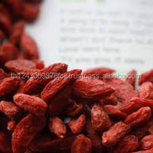 dried fruit goji berry export with cheap goji berry price