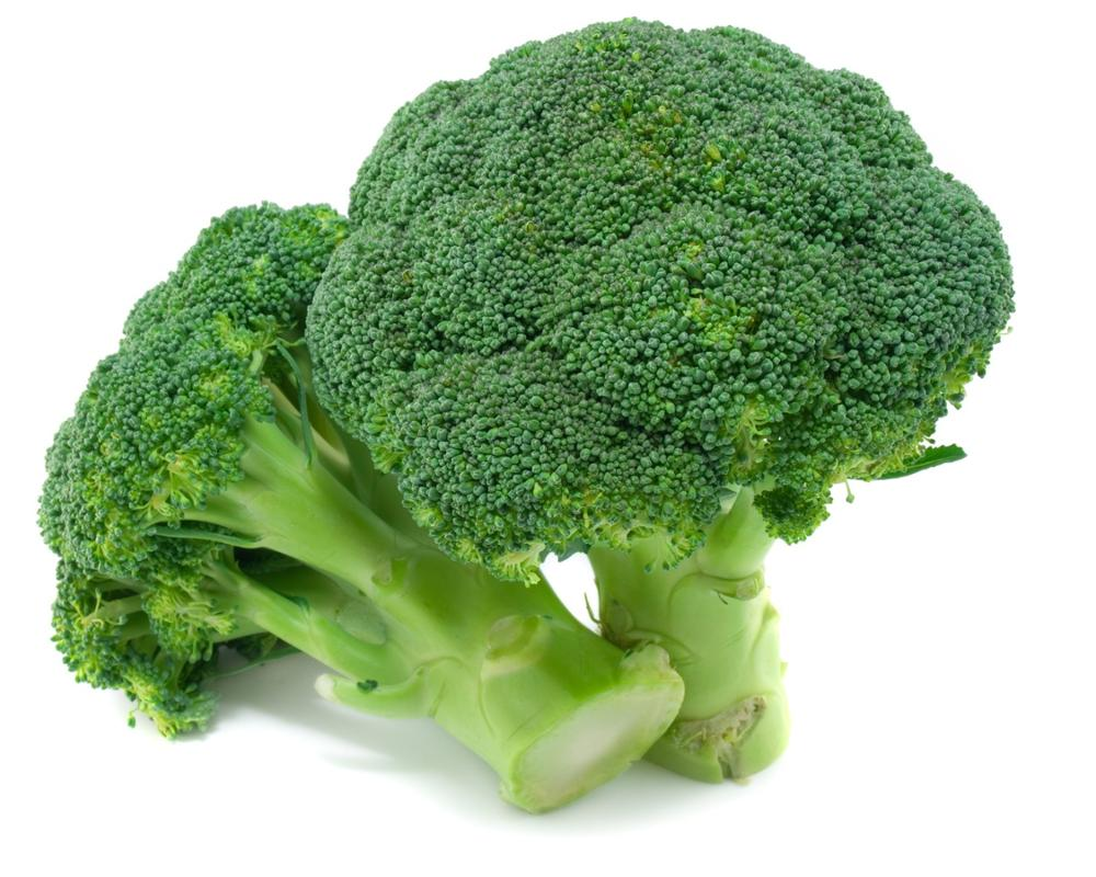 Hybrid Broccoli Seeds - SproutingYour Broccoli Seeds