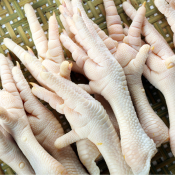 Halal Grade A Chicken Feet / Frozen Chicken Paws UK/CHicken Wings for sale world wide