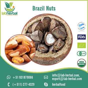 Bulk Imports of Finest Quality Brazil Nuts from Peru