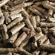 High energy biomass fuel wood pellet for sale