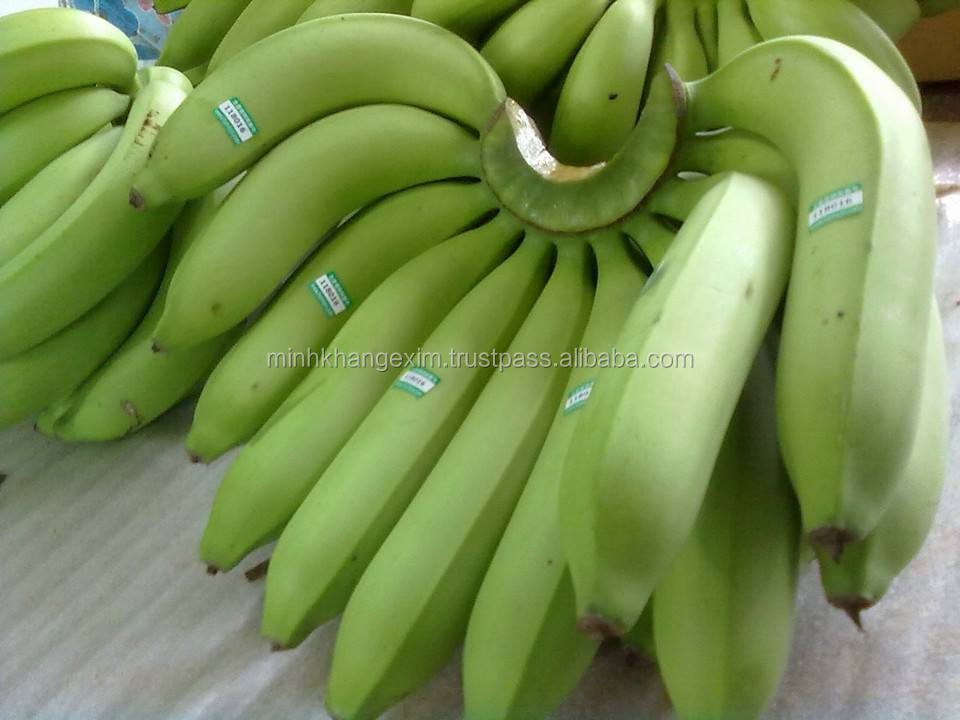 CAVENDISH BANANA FROM VIETNAM_WhatsApp/Wechat: 0084 969960167_QQ: 3588486592