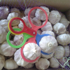 /product-detail/new-crop-garlic-natural-white-garlic-red-garlic-for-importers--50046472823.html