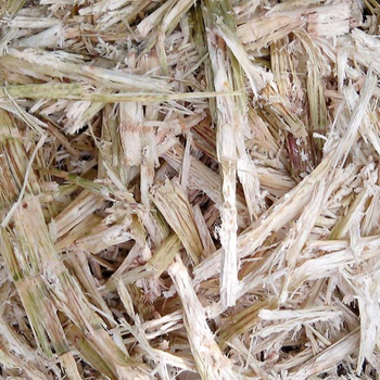Sugarcane Bagasse For Making Biofuel