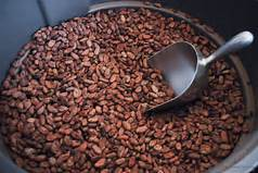 Grade A Top Quality Cocoa Beans from Gabon