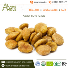 Sacha Inchi Roasted Seeds Supplier from Peru