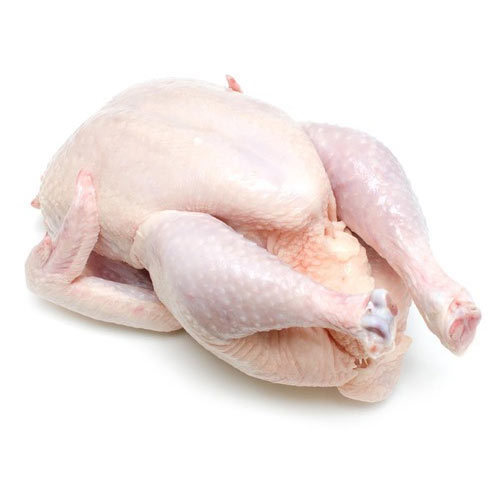 Halal whole Frozen Chicken For Sale